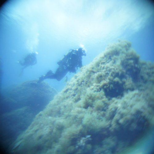 inmersiones altair